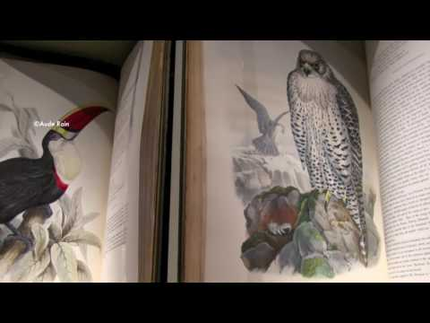 Masterpiece London 2014 | Shapero Rare Books