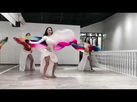 Belly Dance Veil Choreography by Desert Roses