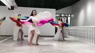 Belly Dance Veil Choreography by Desert Roses