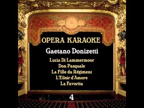 Gaetano Donizetti - L'Elisir d'Amore : Come paride vezzoso