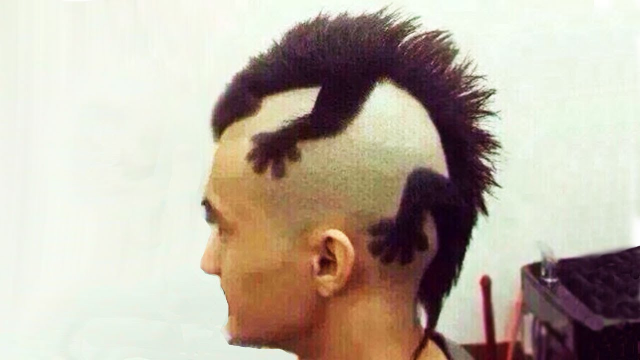 Crazy Animal Haircuts Youtube
