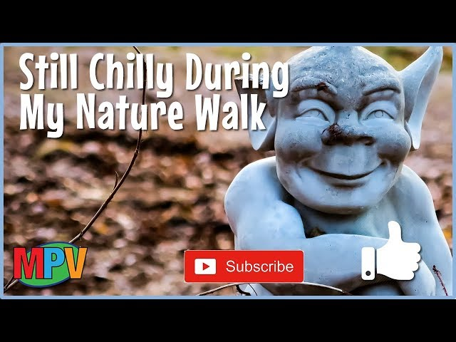 Still Chilly During My Nature Walk (4.4.19) #1251