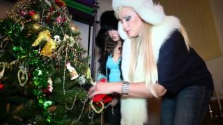 Наталия Гулькина - Новый год !!!!!!!
