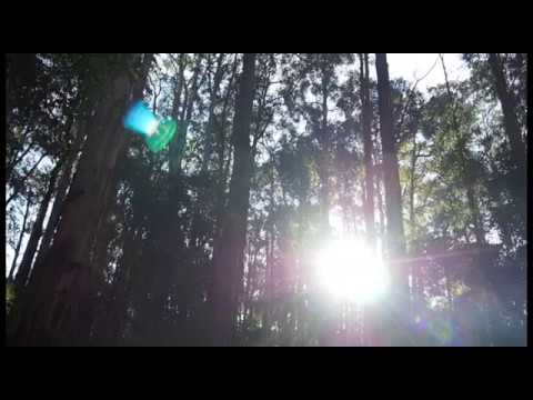 10 minute meditation music. The Forest Breath (ambient no3)