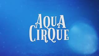 A2D2's Cirque-tacular Production: Aqua Cirque
