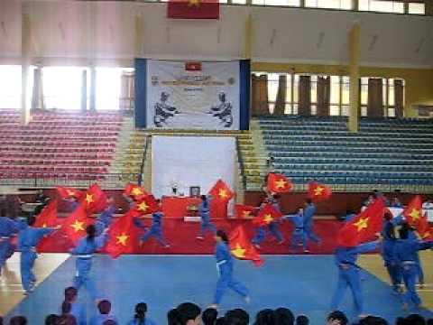 Múa cờ Vovinam - Việt Võ Đạo