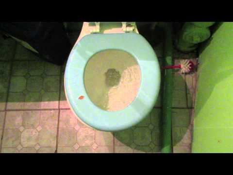 1982 Briggs Conserver Toilet Doovi