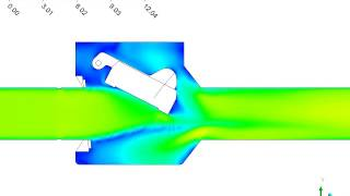 Animation of Transient Velocities in a Swing Check Valve
