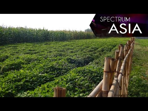 Spectrum Asia— Message from the land Part 1 and 2 trailer 06/08/2016 | CCTV