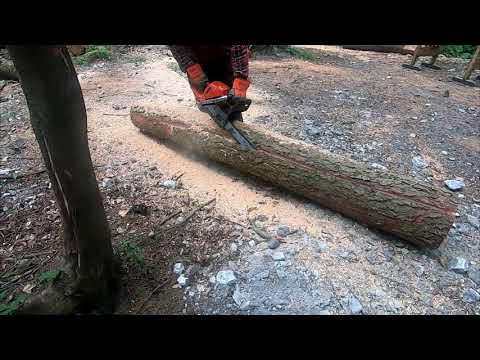 Chainsaw Milling Free Hand Life Hack (no First Cut Mill/jig Required)