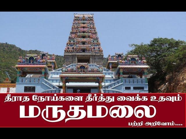Marudhamalai Temple, Coimbatore | மருதமலை கோயில், கோயமுத்தூர்
