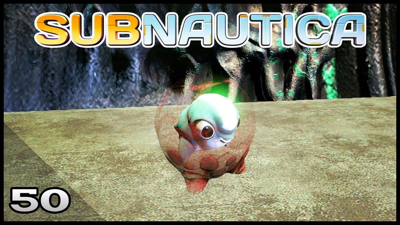 Subnautica 50 Cuddle Fish Locations