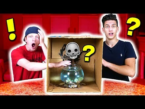 EXTREMELY DANGEROUS WHAT'S IN THE BOX CHALLENGE! 💀
