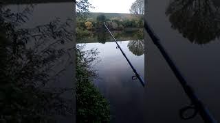 Рыбалка на живца с берега 2021 г