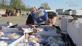 Essen ohne Geld: Die Food-Rebellen