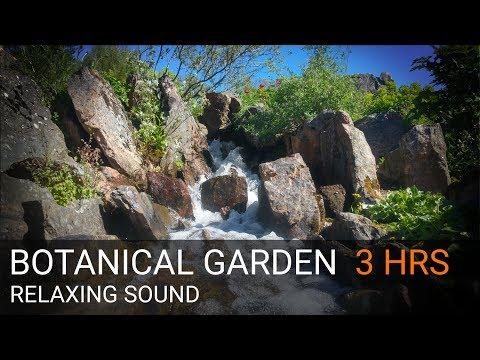 BOTANICAL GARDEN CREEK - 3 HRS SLEEP SOUND & VIDEO