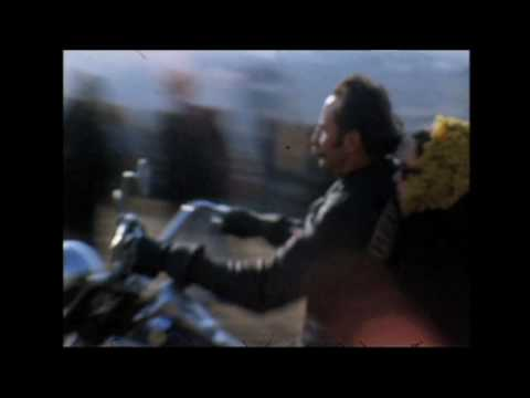 Gimme Shelter Trailer - HD