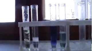 Опыты с белками. Часть первая: домашние опыты.(Домашние опыты с белками. Для них использовались только реактивы,которые можно спокойно,без напряга, доста..., 2013-10-20T10:19:14.000Z)