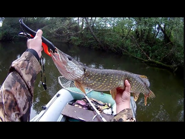 Ловля щуки спиннингом на малой реке 13 сентября 2020
