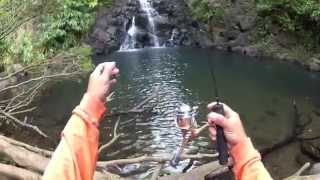 Fishing Hawaii