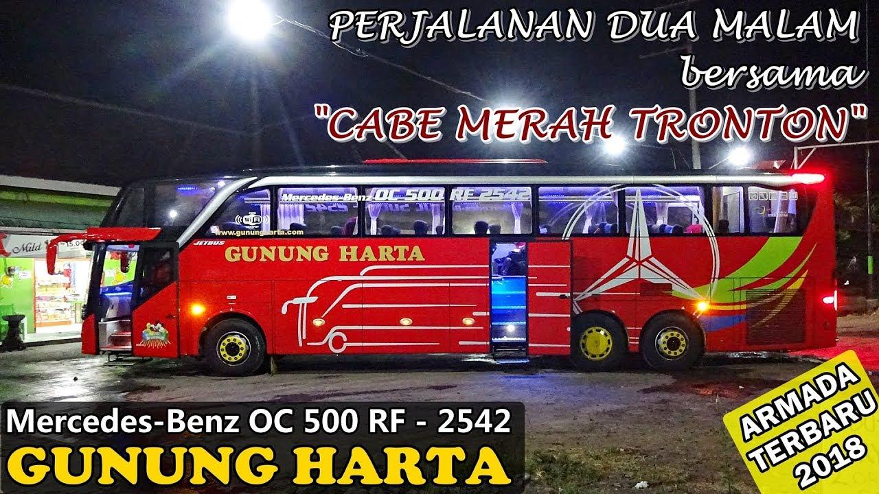 Naik Bus Terbaru Gunung Harta Surabaya Ke Bali
