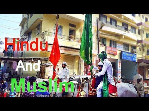 Hindu & Muslim Celebrated Moharam  In Solapur 2016 In 2K