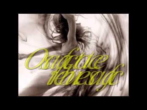 I will allways find you-Sarah Connor ( tradus in romana)