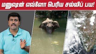 Cyclone Nisarga | Kerala Elephant Matter | Kichdy