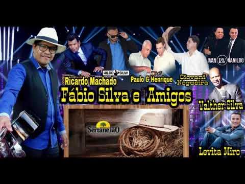 Fabio Silva e Amigos  Sertanejo Gospel  2018  completo vol1