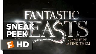 Fantastic Beasts And Where To Find Them Official Sneak Peek #1 (2016) - Eddie Redmayne Movie HD