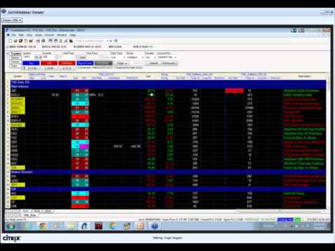 Trading Stocks and Options with the THD indicators and methodology.