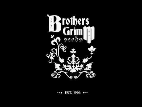 Episode 1 - Duke Diamond VA of Brothers Grimm