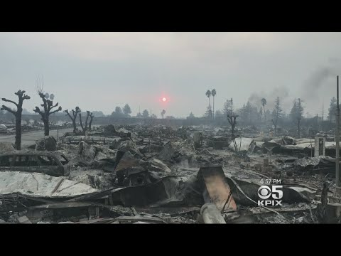 Wine Country Fires: Seven Days of Terror, Heartbreak, and Perseverance