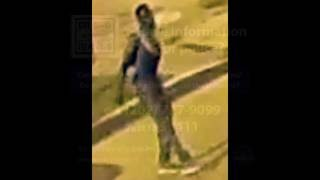 person of interest in theft i 5500 b o 5th st nw on august 13 2016