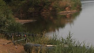 Ловля белого амура.Рыбалка на амура 2016