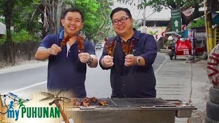 Oink the Grill | My Puhunan