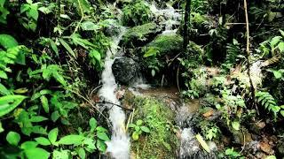 Hontanar agua mineral natural