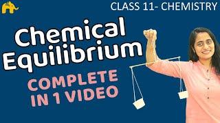 Equilibrium Chemistry Class 11 | Chapter 7 Chemical Equilibrium One Shot | CBSE NEET JEE