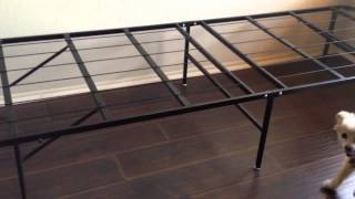 Innovated Box Spring, Bed Frame, Metal Frame - Platform Metal Bed Frame/foundation. Queen $89 Amazon(Disclaimer: This is a boring video of some clips of how easy it is to install this bed frame that is sold on amazon (it is also sold in Target and Walmart). We bought ..., 2013-10-08T16:22:47.000Z)