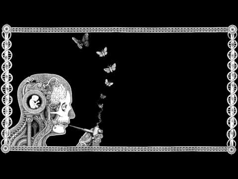 Cognitive - Soen (FULL ALBUM)