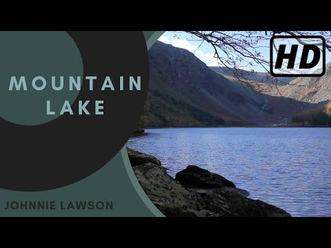 Nature Sounds-relax Forest Birdsong-Relaxing sound of Lapping Water-Sleep Relaxation Meditation