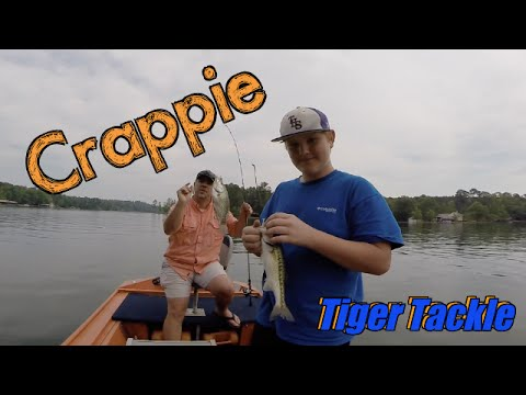 Crappie fishing on lake martin tiger tackle youtube for Lake martin fishing