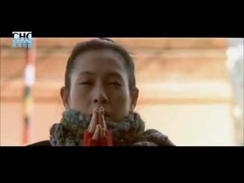 chinese Martial Arts Movies chinese action movie 刘德华 Andy Lau
