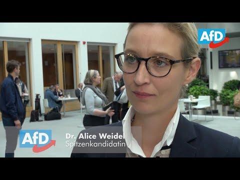 """Alice Weidel zum Thema """"Flüchtlingswelle hinterlässt Spuren"""""""