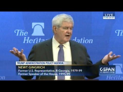 Newt Gingrich Explains The Donald Trump Phenomenon