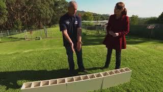 Training Of Australian Drug Detector Dogs - S1 Ep 6