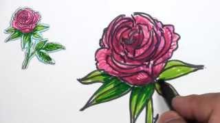 rose drawing draw simple drawings getdrawings paintingvalley