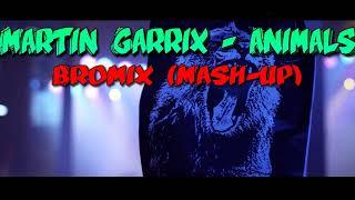 Martin Garrix - Animals (Bromix Mash-up) Video