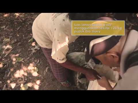 #SeriTestimoni Pengguna Biogas Rumah (BIRU) - Nusa Tenggara Barat
