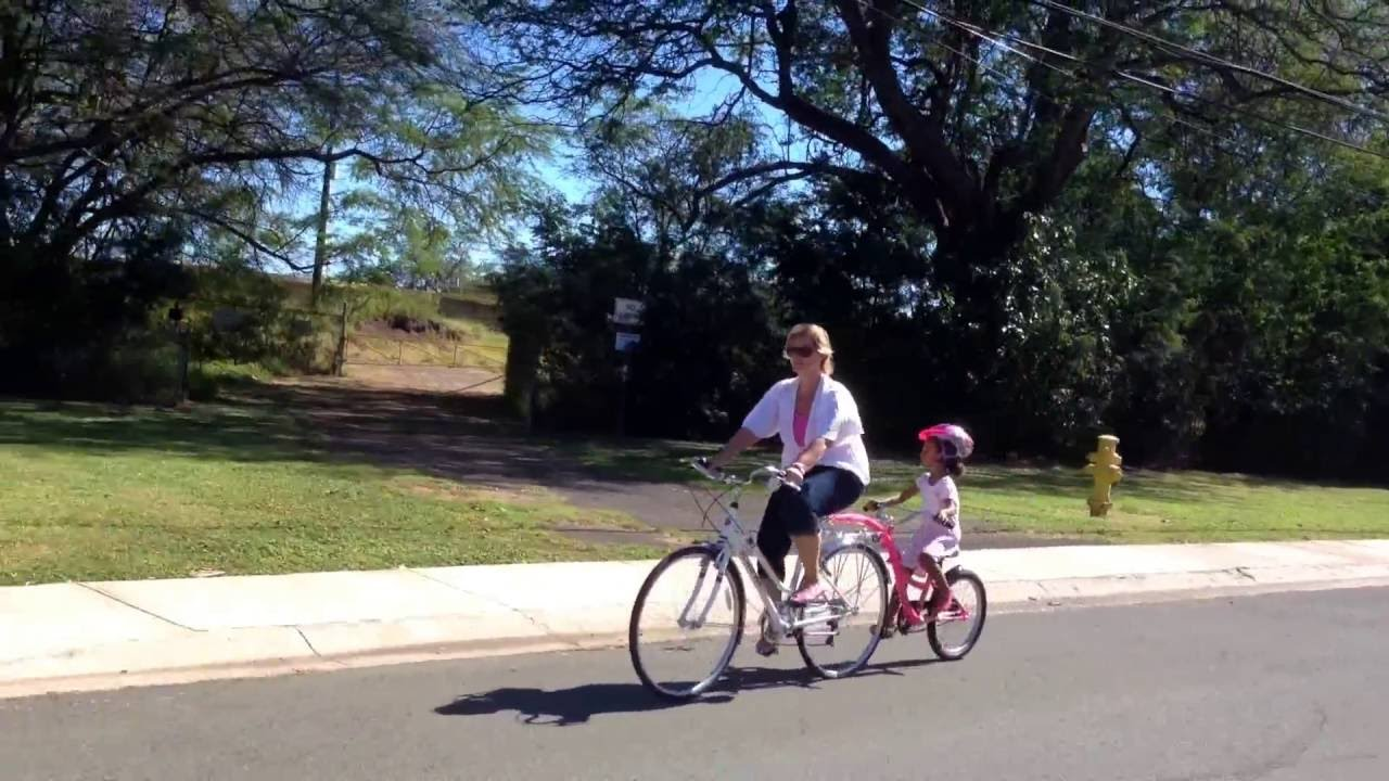 2 Kids/Child Bicycle Tow Behind Trailer, Baby Stroller
